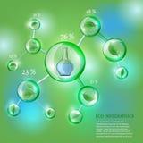 Infographics Życiorys bąbel ilustracja wektor