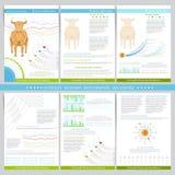 Infographicselementen in de vlakke stijl van de conceptenbeurs Gebruik voor marketing, vlieger, collectief rapport, presentatie Royalty-vrije Stock Afbeeldingen