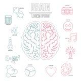 Infographicsuppsättning för mänsklig hjärna, översiktsstil Arkivfoto