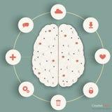 Informação do cérebro Foto de Stock