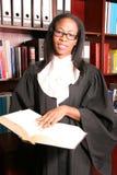 Informação profissional bonita da busca do advogado Fotos de Stock Royalty Free