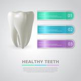 Información de la odontología Ilustración del vector Foto de archivo