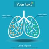 Información sobre el pulmón Imágenes de archivo libres de regalías