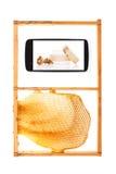 Información sobre sus yemas del dedo Foto de archivo libre de regalías
