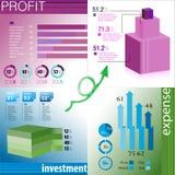 Informatie-grafisch element Stock Afbeelding