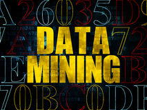 Information concept: Data Mining on Digital Royalty Free Stock Photography