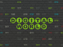 Information concept: Digital World on wall Royalty Free Stock Image