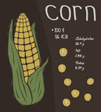 Information of corn, nutrition facts  concept Royalty Free Stock Image