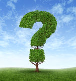 Information Growth. With a tree in the shape of a question mark on a blue sky and grass as a concept of answers and growing searches on the internet or Royalty Free Stock Photos