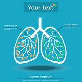 Information about Lung. Vector illustration, information about lung Royalty Free Stock Images