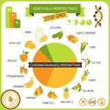 Information Poster Genetically Modified Foods. / Royalty Free Stock Photos