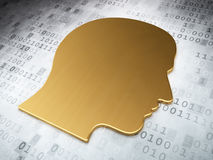 Informationsbegrepp: Guld- huvud på digital bakgrund Royaltyfri Bild