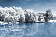 Infrafed photo of the pond Royalty Free Stock Image