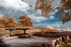 Infraröd bild av ett parkeralandskap i falska färger arkivfoto