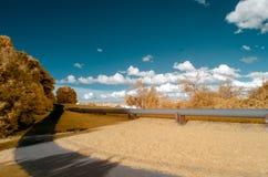 Infraröd bild av ett parkeralandskap i falska färger fotografering för bildbyråer