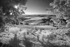 Infrarött landskap av Tuscany royaltyfri fotografi
