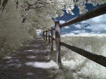 infrarött spår Arkivbilder