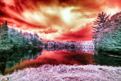 Infrared Alien Landscape Under a Blood Red Sky. An infrared photo of an alien like landscape of a lake surrounded by trees with a blood red sky royalty free stock image
