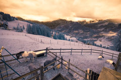 Infrared Alpine Landscape Stock Photography