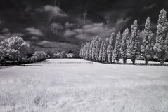 Infrared black and white landscape Royalty Free Stock Photography