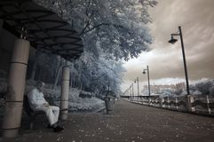 Infrared city Royalty Free Stock Photography