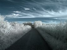 Infrared country road Stock Photography