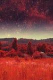 Infrared fotografia Fotografia Stock