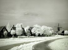 Infrared in Holland Stock Foto