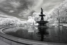 Infrared image of the Central Park Stock Photos