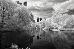 Infrared image of the Central Park Royalty Free Stock Photo