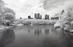 Infrared image of the Central Park Stock Photography