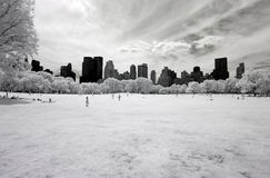Infrared image of the Central Park Royalty Free Stock Photos