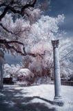 Infrared image column royalty free stock photo
