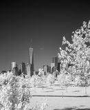 Infrared image of the Lower Manhattan from the Liberty Park Royalty Free Stock Image