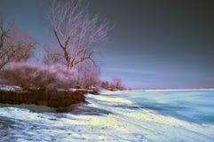 infrared krajobraz Fotografia Stock