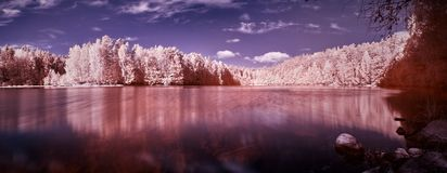Infrared lake panorama Stock Photography