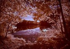 Infrared lake view Stock Photos