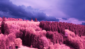Infrared Land Stock Photo