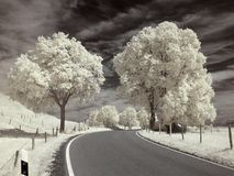 Infrared landscape. Photo was made with an infrared filter Stock Photos