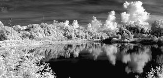 Free Infrared Landscape Royalty Free Stock Photos - 3708918