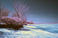 Infrared Landscape. Winter scene shot with an infrared filter stock photography