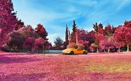 Infrared landscape of Aigaleo park Greece - purple nature landscape. AIGALEO GREECE, APRIL 23 2016: infrared landscape of Aigaleo park Greece. Editorial use royalty free stock image