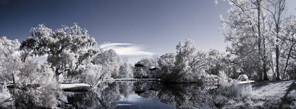 Infrared landscape of parkland and pond Stock Photography