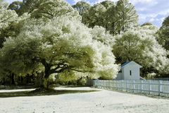 Infrared landscape photo Stock Images