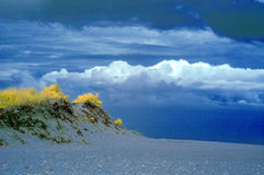 Infrared landscape of sea dune and clouds Royalty Free Stock Photography