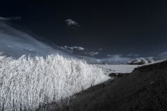 Infrared landscape with shadows Royalty Free Stock Photo
