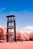 Infrared Landscape Stock Image