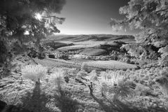 Infrared landscape of Tuscany Royalty Free Stock Photography