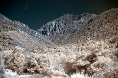 Infrared mountains Stock Images