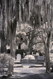 Infrared of old cemetery Stock Photo